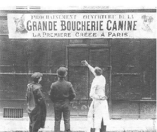 Парижская мясная лавка «Grande Boucherie Canine», специализирующаяся на собачатине