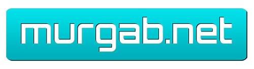 Логотип murgab.net