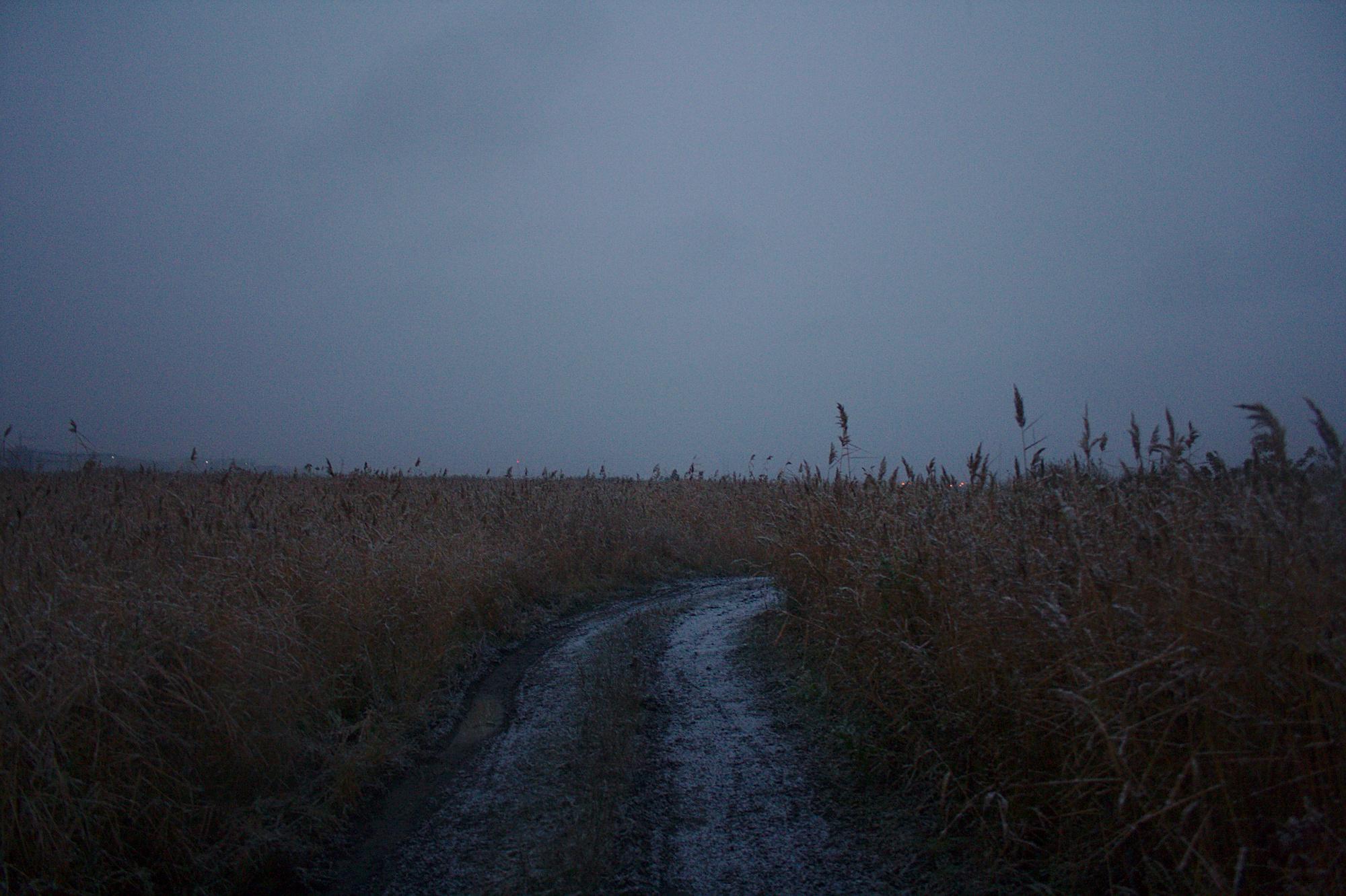 Только легкий шелест колосьев в зловещей тишине холодного утра напоминает, что это реальность — то самое поле у озера, где была обнаружена очередная жертва психопата.
