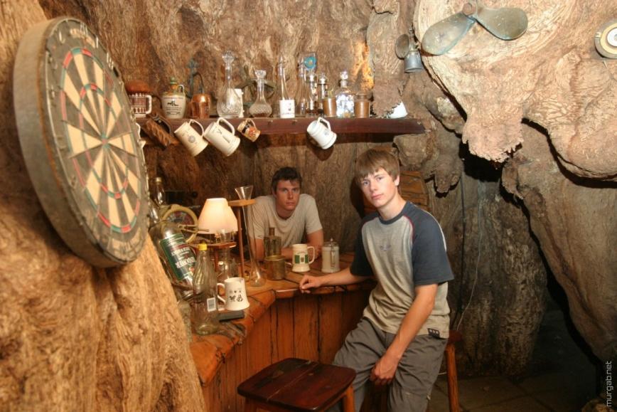 Бар внутри 6000-летнего баобаба