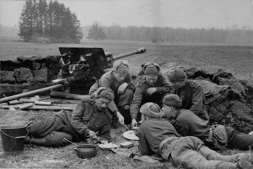 Война войной, а обед — обедом